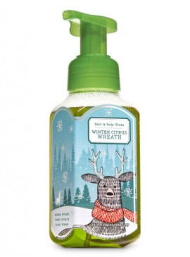 More about Пенящееся мыло для рук Bath and Body Works - Winter Citrus Wreath